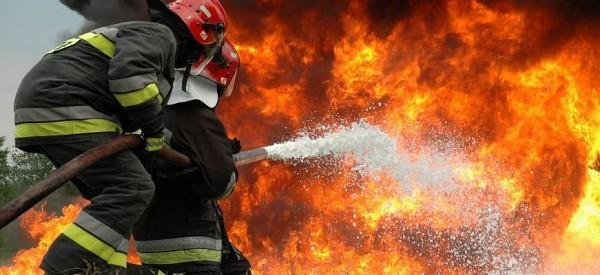 ΠΔΕ: Σωστή προετοιμασία και συνεργασία για την εξάλειψη των κινδύνων από δασικές πυρκαγιές