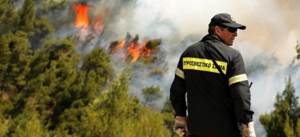 ΠΔΕ: Προληπτική απαγόρευση κυκλοφορίας σε εθνικούς δρυμούς, δάση και ευπαθείς περιοχές για αποφυγή δασικών πυρκαγιών