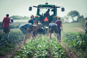 ΠΔΕ: Εντάχθηκαν οι πρώτοι 1.205 νέοι αγρότες στο Πρόγραμμα Αγροτικής Ανάπτυξης 2014-2020